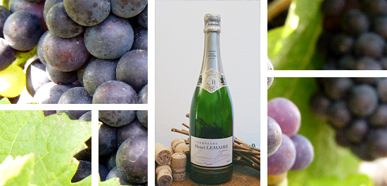 Photo bouteille cuvee esprit pinot