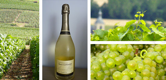 Photo bouteille cuvee pur Chardonnay